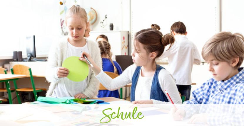 BACKWINKEL-Blog: Blogartikel zum Thema Schule